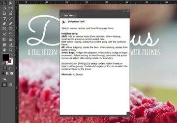 indesign tool hints