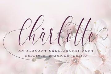 elegant calligraphy fonts