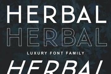 Herbal Font Family