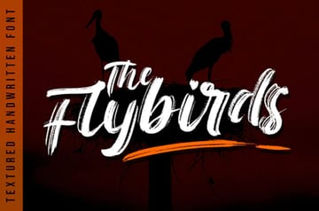 The Flybirds - Textured Brush Font