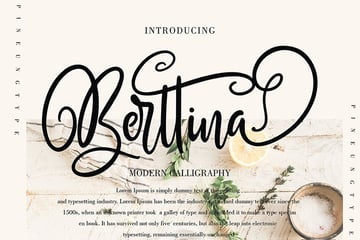 Berttina Script Font