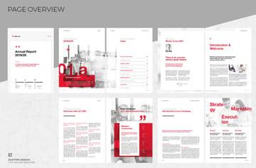 professional annual report