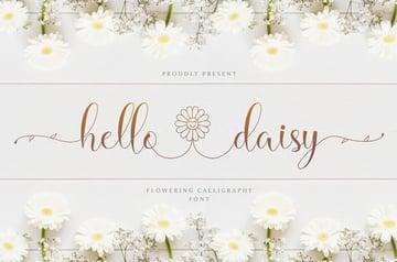 Hello Daisy Calligraphy Flower Font