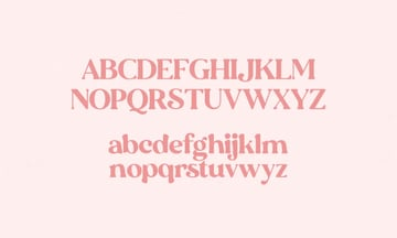 Delicious Rounded Serif Font