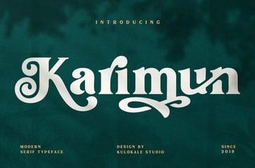 stylish serif font