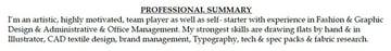 Functional Resume Summary Professional Designer