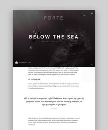 Forte Stylish WordPress Theme for Writers and Authors