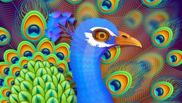Create a Vibrant Peacock in Adobe Illustrator
