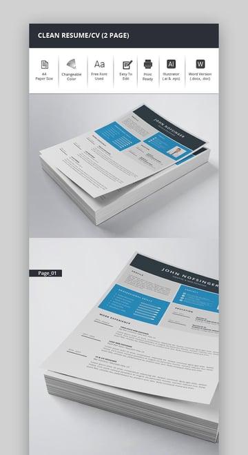 Clean ResumeCV 2 Page