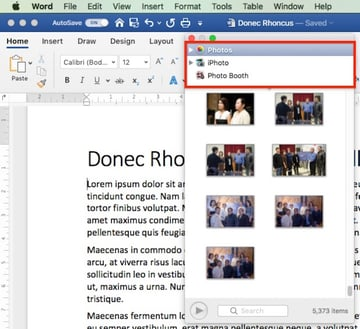 Insert Picture in Word - Photo Browser