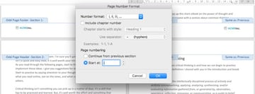 Change section page number format - Microsoft Word