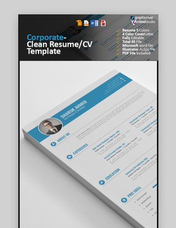 clean stylish resume template