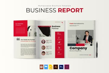 what is the meaning of annual report