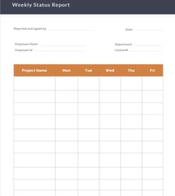 Company Weekly Status Report Template