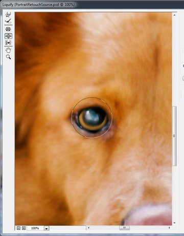 Increase eye size with Liquify