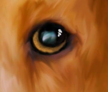 Adding Eye Specular