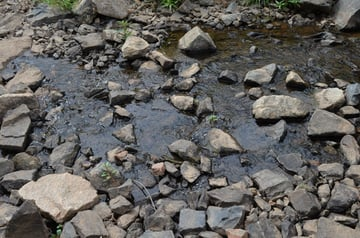 The little rocky stream we have passed by on so many occasions