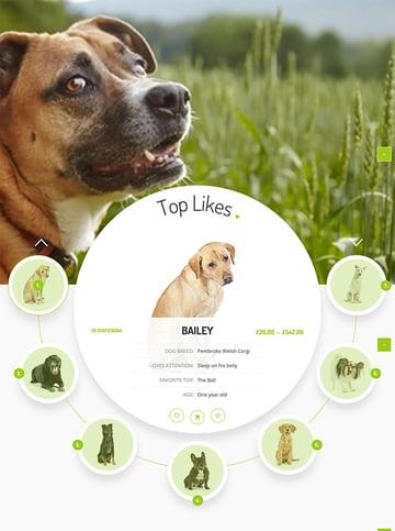 Pets - Haustiere RTL WooCommerce WordPress Theme