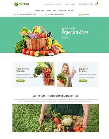 Organica - Cosmetic Food Organic Beauty Shopify Theme - Sections Ready