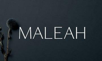 Maleah Sans Serif 4 Font Family Pack