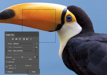 How to Trace Photo In Illustrator Black and White