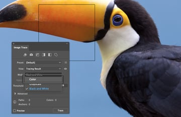 How to Trace Photo In Illustrator Select Color Mode