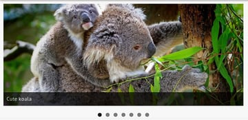 MetaSlider - Slider gratuito y responsive para WordPress