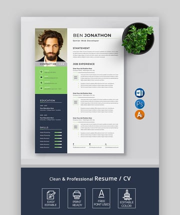 Clean Professional Resume/CV + Cover Letter