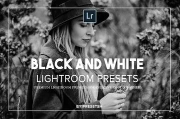Lightroom Black and White Presets Bundle