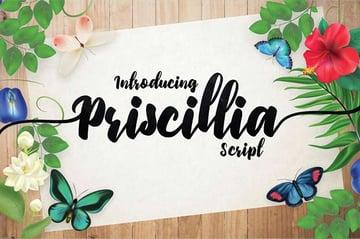Priscillia Script Pretty Font