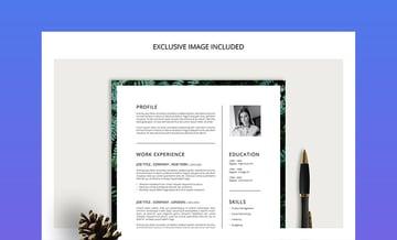 Ferns Innovative Creative CV Resume Cover Letter