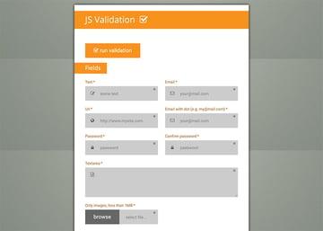 Forms Plus JavaScript Form