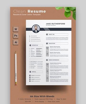 Clean Resume Download Template CV Word