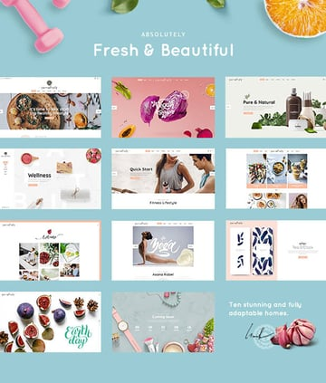 Succulents Health Physiotherapy WordPress Theme