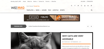 Wise Mag is a fast WordPress theme