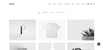 Folim - use this WordPress theme to create a portfolio website and an online store at the same time