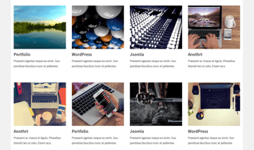 Portfolio - a useful portfolio builder for WordPress