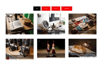 Portfolio Gallery is a free portfolio builder plugin for WordPress