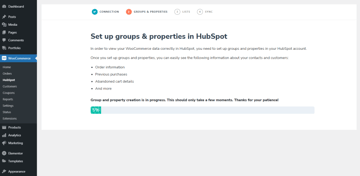 Set up groups and properties for HubSpot - loading