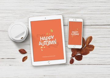 Responsive Design Device iPad iPhone Mock-Up