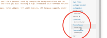 themes footer