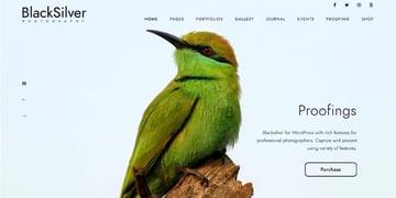 Blacksilver - Photography Theme for WordPress