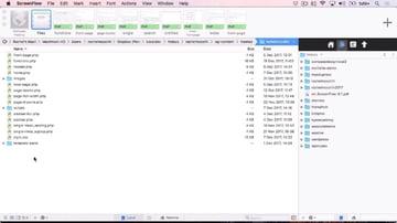The WordPress theme files as shown in Coda