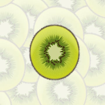 Create a Sliced Kiwi Fruit With Only One Shape in Adobe Illustrator