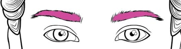 Complete the eyebrows