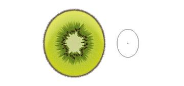 Kiwi Fruit with one shape