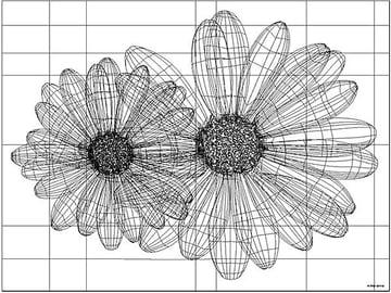 Andrej Kaprinay Vector Wire Frame