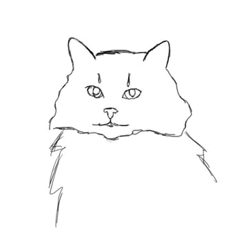 Trace the Cat Reference