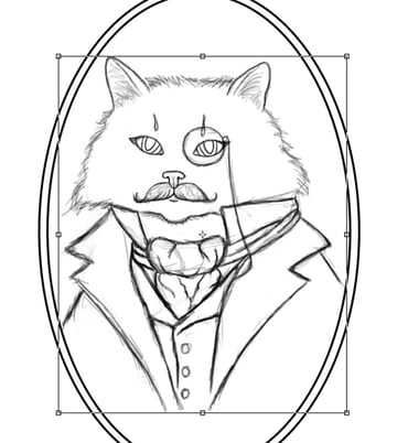 Resize the Cat to Fit Inside the Frame