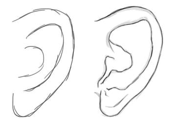 Drawing and Sketching a Human Ear